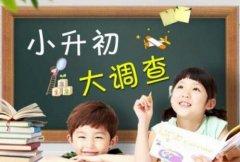 小升初该怎么办?上海绿光教育大揭密