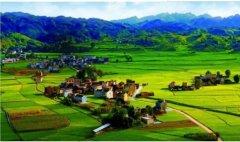 """绿光""""贵州·童年""""遵义乡村生活体验夏令营开营"""
