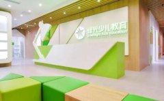 上海绿光少儿教育都包含哪些课程内容?一起来